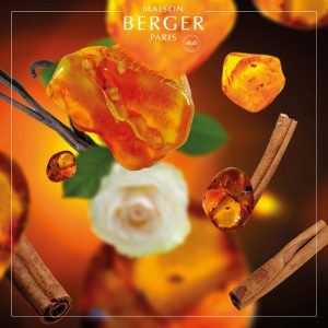 Lampe Berger Amber Powder Refill