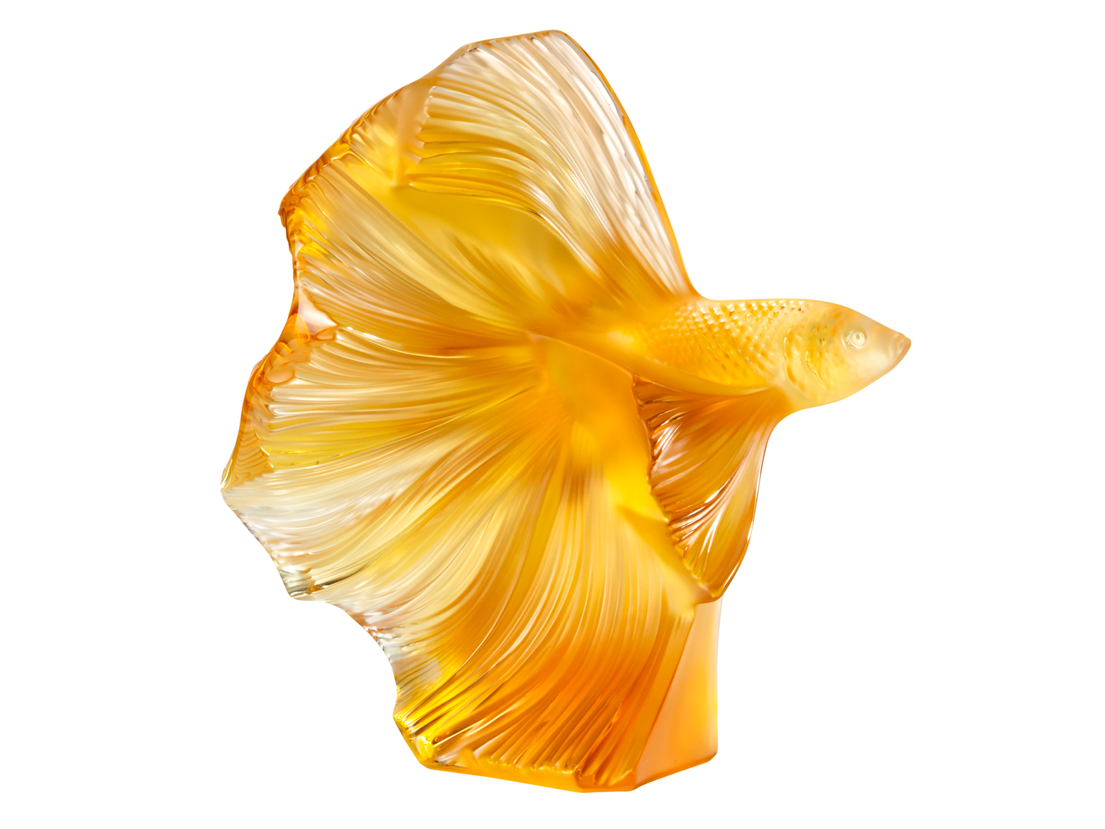 Amber Berger Nude lalique fighting fish - amber / large